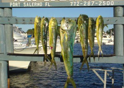 Fishin_in_January_027