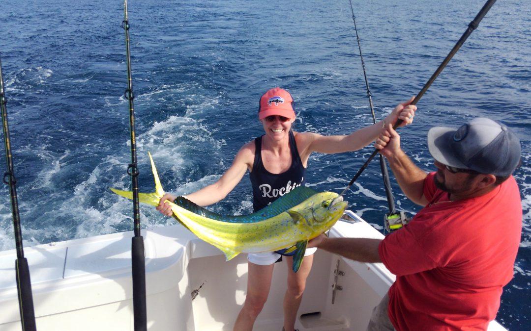 Mahi Mahi, Tuna, kingfish and Sailfish