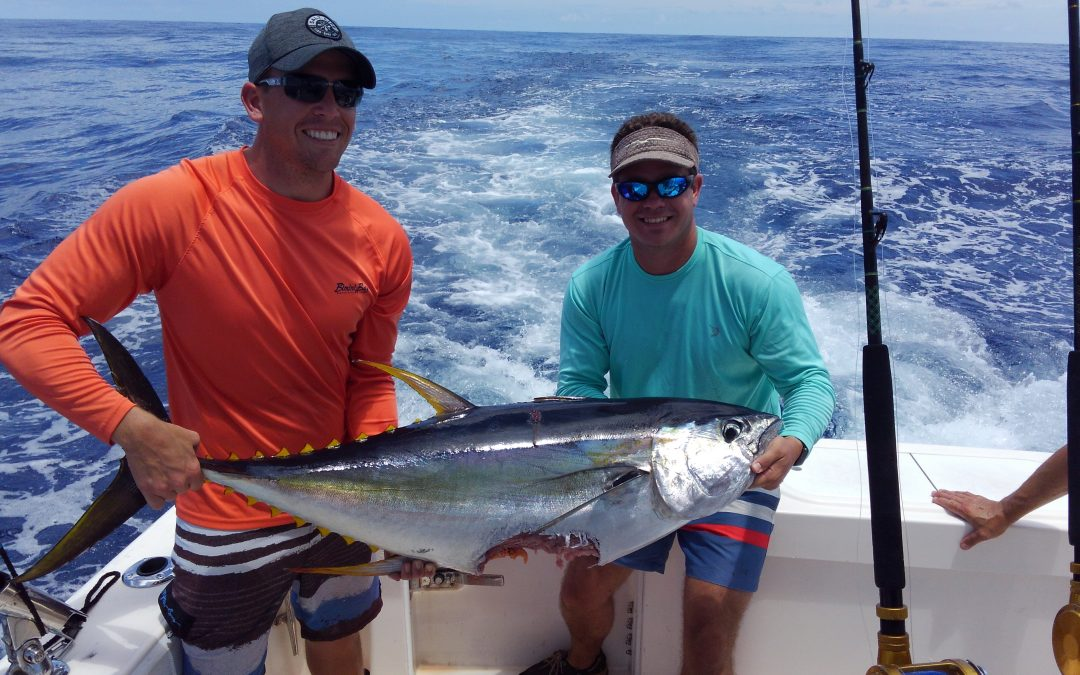 Tuna, Marlin and Mahi Mahi